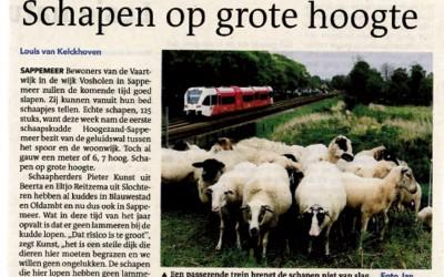 Stadskudde Hoogezand Sappemeer nu actief